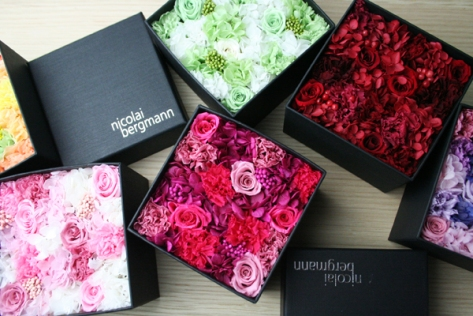 Boxed preserved flowers. Super stylish. Great for Valentine's and Christmas.